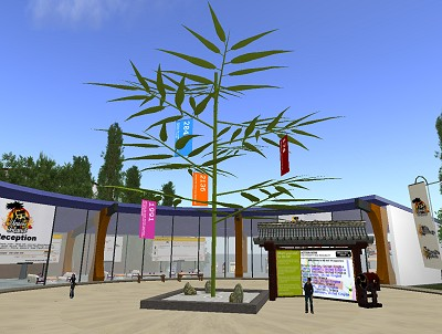 Tanabata tree in SL